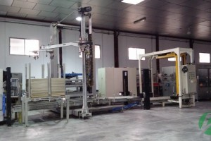 Picture of Palletizer BERCHI SPA-GENIUS PT
